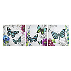 more details on Collection Exotic Butterflies - Set of 3.