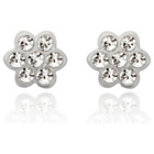 more details on 9ct White Gold Cubic Zirconia Flower Stud Earrings.