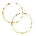 more details on 9ct Gold Plain Capped Hoop Earrings.