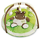 more details on Bebe Hippo Playmat - Green.