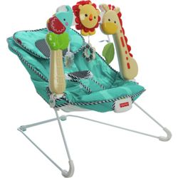 Fisher Price BFB13 Bouncer