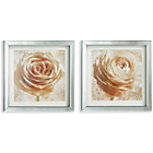 more details on Collection Cream Roses in Mirror Frame Prints - Set of 2.
