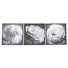 more details on Collection Black and White Floral Canvas - Set of 3.