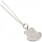 more details on Sterling Silver Everton FC Pendant & Chain.