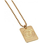 more details on Gold Plated Celtic Dog Tag & Ball Chain.