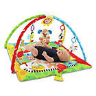 more details on Fisher-Price Puppy 'n Pals Learning Gym.