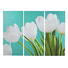 more details on Collection Tulip Triptych Canvas - Set of 3.