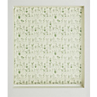 more details on HOME Potted Plants Daylight Roller Blind - 3ft.