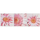 more details on Collection Gerberas Canvas - Set of 3.