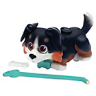 more details on Pet Parade Bernese Single Puppy Pack.