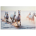more details on Collection Sunset Horses Canvas.