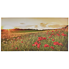 more details on Collection Sunset Poppy Field Canvas.