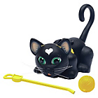 more details on Pet Parade Black Cat Single Kitten Pack.