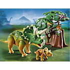 more details on Playmobil 5234 Explorer and Triceratops with Baby.