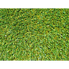 more details on Meadow Artificial Grass - 4 x 4 Metres.