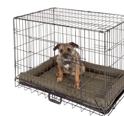 buy thomas the tank engine small pet habitats and cages at. Black Bedroom Furniture Sets. Home Design Ideas