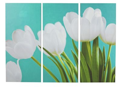 Collection Tulip Triptych Canvas - Set of 3